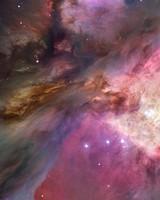 Orion Nebula Hubble Space Telescope