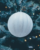 Christmas Tree Close-up Bokeh