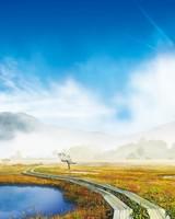 Beautiful Foggy Mountains