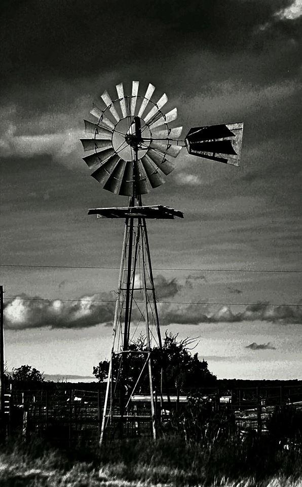 Free nm windmill.jpg phone wallpaper by tribeca