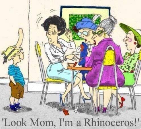 Free rhino.jpg phone wallpaper by tribeca