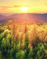 Mountains Woods, Sunset
