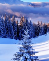 Winter Season, Mountains