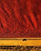 Namibian Landscape Photography