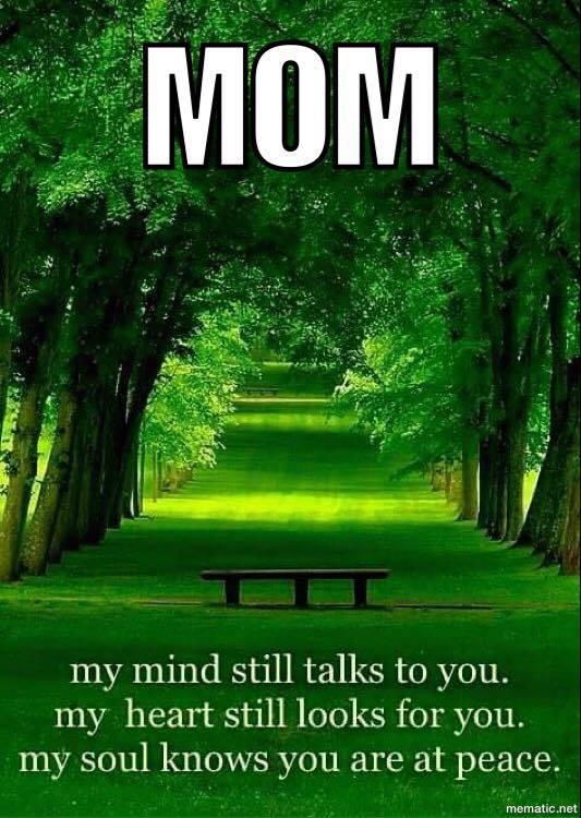 Free mom.jpg phone wallpaper by tribeca