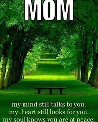 mom.jpg wallpaper 1