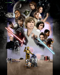 SWCO2017-40th Anniversary - colored