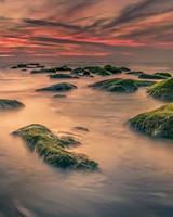 Stones, Sea, Moss