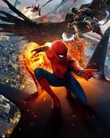 Spider Man Homecoming Movie