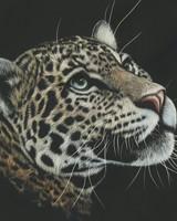 Leopard Artwork Paint