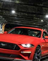 Ford Mustang GT Performance Pack Level