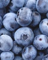 Bilberry, Blueberry
