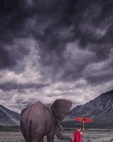 Elephant, Child Monk, Field, Storm Clouds