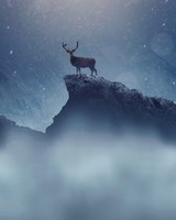 Christmas Deer Snowfall