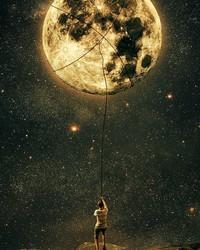 moonlight_night-3079f942-2949-4c8e-8f85-697280c87dd2.jpg