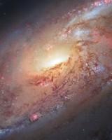 Messier 106 Spiral Galaxy