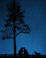 Couple, Kiss, Dog, Starry sky