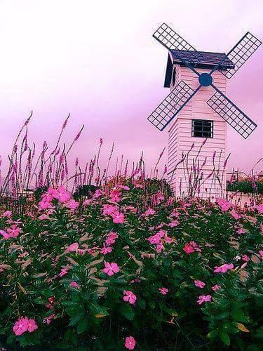 Free windmill.jpg phone wallpaper by tribeca