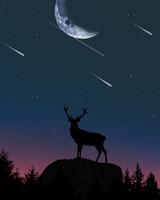 Deer, Silhouette, Twilight, Moon, Hill