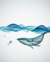 Underwater Whale Illustration