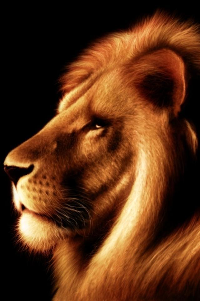 Free lion king phone wallpaper by ash_ketchump