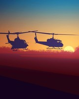 Military Choppers Sunset