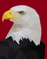 Bald Eagle Polygon