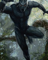Black Panther  Artwork