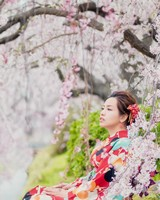 Sakura girl Red Kimono