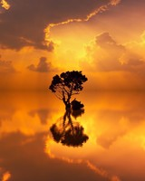 Most Beautiful Waterscapes with Sunset