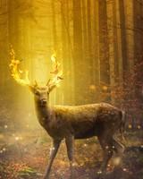 Fire Deer Fantasy Art
