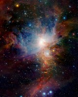 Orion Nebula in Infrared