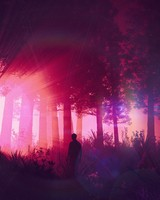 Man, silhouette, forest, art