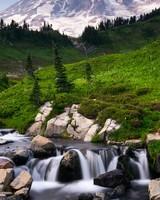 Mount Rainier over Edith Creek