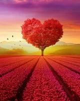 Heart tree Landscape