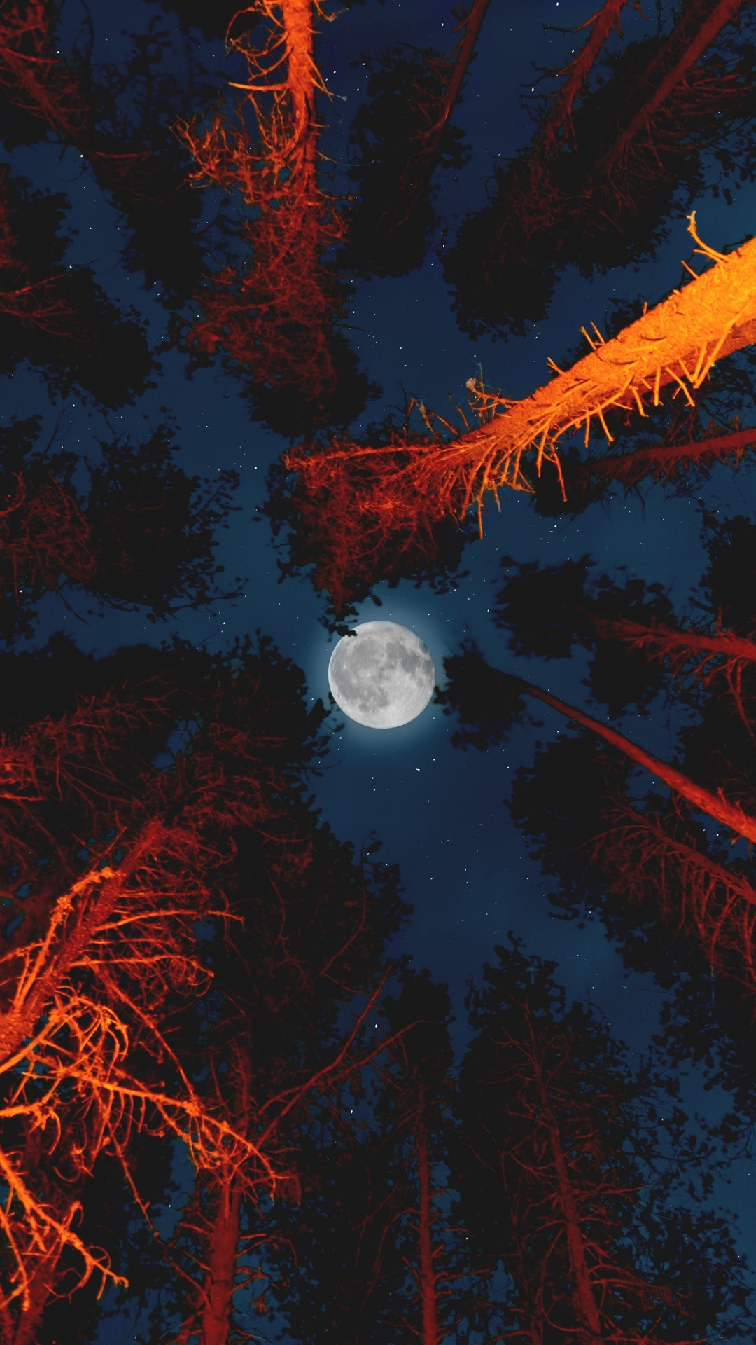 Free Moon with Campfire in Forest phone wallpaper by mrf2009