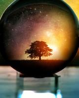 Bokeh Globe