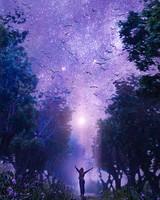 Forest, starry sky, art, purple, fabulous