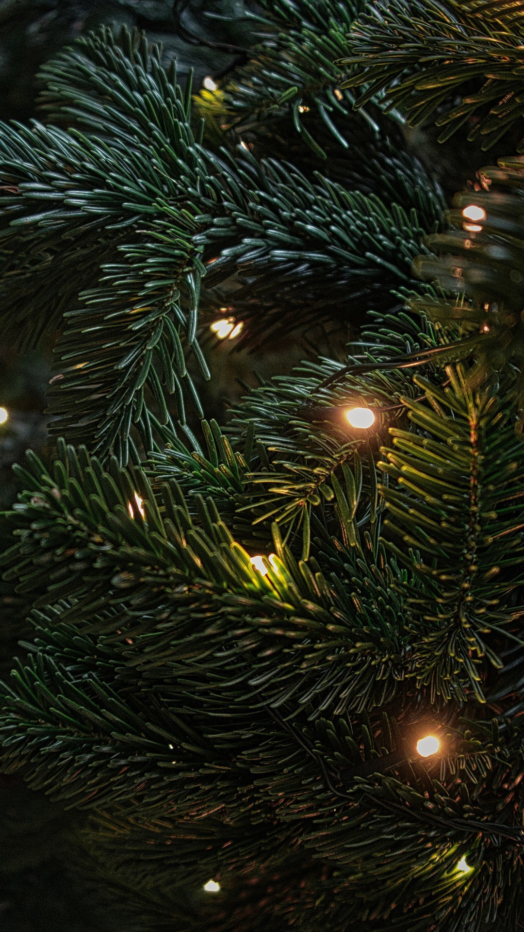 Free Christmas Tree Decoration phone wallpaper by nscriv