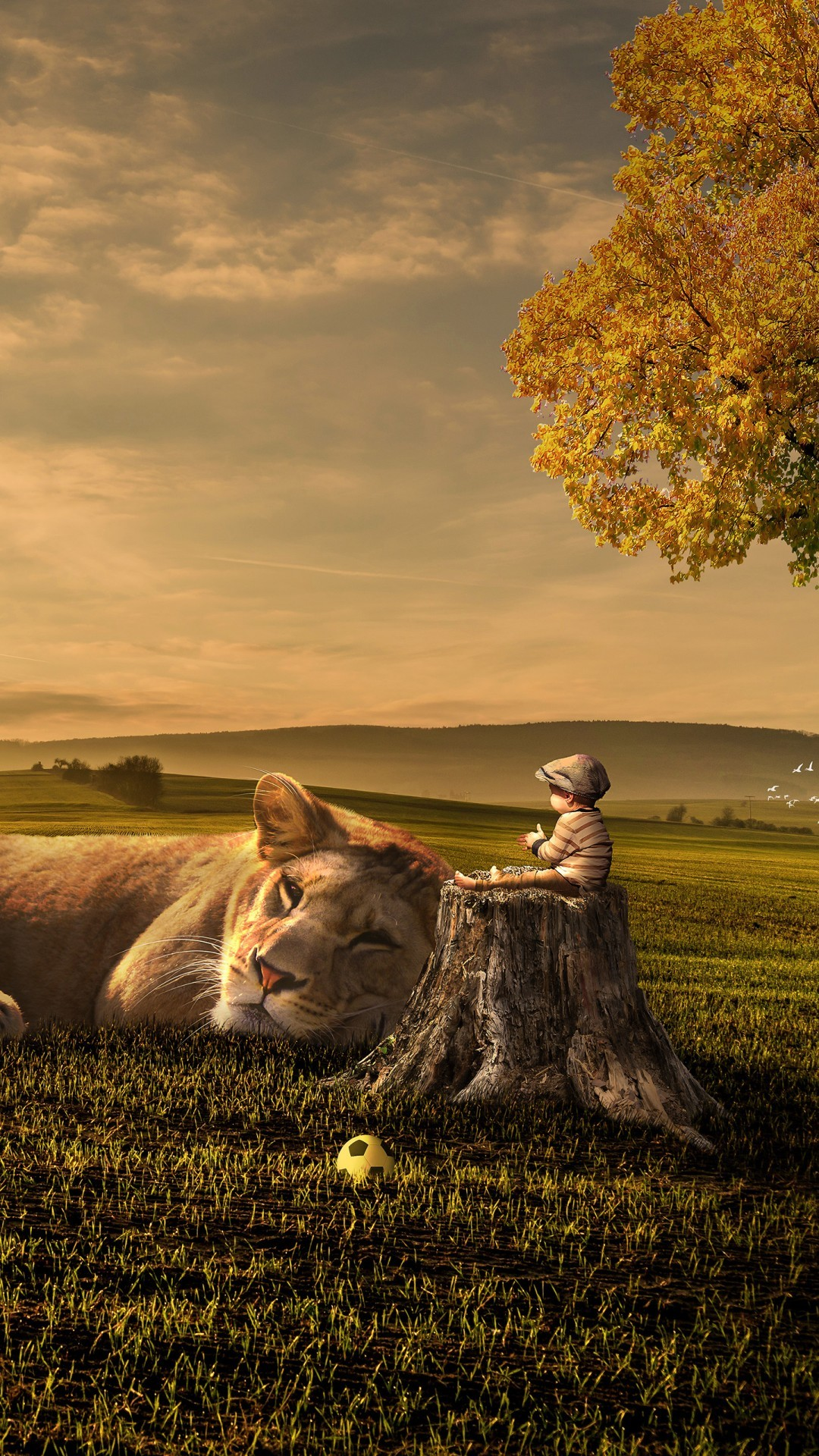 Free Sunset Kid Lion Dream phone wallpaper by xxfelecia