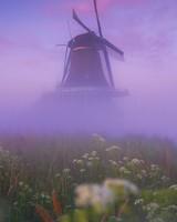 Netherlands Traditional Windmill Morning Mist
