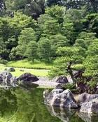 rock_lake.jpg