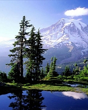 Free #Nature-001a.jpg phone wallpaper by iamlal2