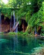 #Nature-002a.jpg