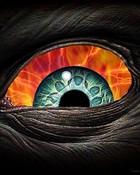 eye-02.jpg