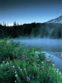 Free misty mountains.JPG phone wallpaper by sassyhoneybee