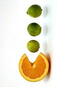 Nimbu(Lemon)-1.jpg
