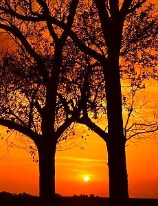 Free Sunrise-009.jpg phone wallpaper by iamlal2