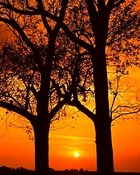 Sunrise-009.jpg wallpaper 1