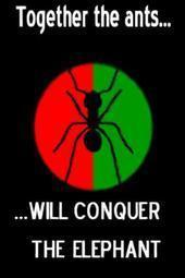 Free the ant.jpg phone wallpaper by megablast